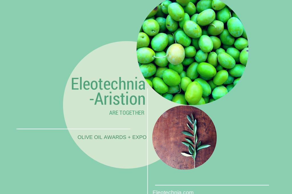 eleotechnia.com2